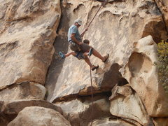 Rock Climbing Photo: Gpa Steve (a 1k Local at JT) has always wanted to ...