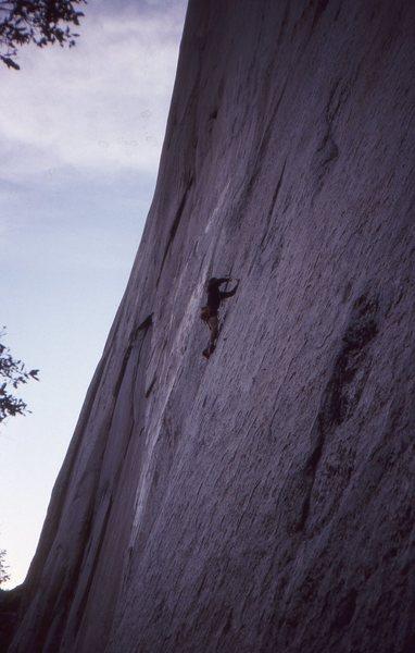 Rock Climbing Photo: Rock Neurotic - FA