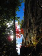 Rock Climbing Photo: An unknown climber TR's through fall colors on Lay...