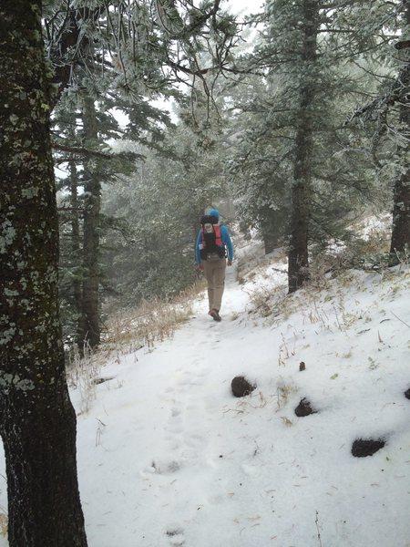 Rock Climbing Photo: October snow / hail, Sandia Mountains, NM.