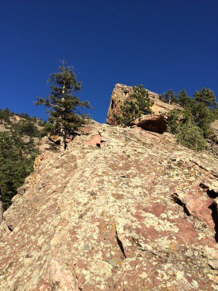 The ridge.