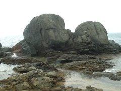 Rock Climbing Photo: Sea bubbles. Boulder 15 ft easy