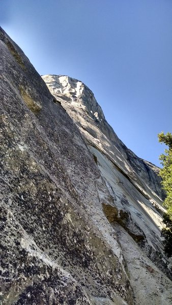 Looking up El Cap this summer.