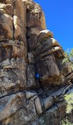 Rock Climbing Photo: Leading the long and enticing Rich And Famous.  iP...