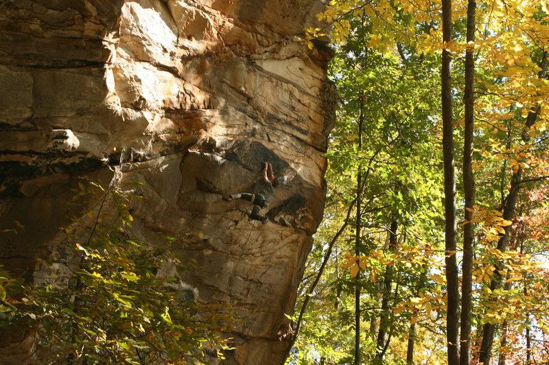 Rock Climbing Photo: moving through the upper crux