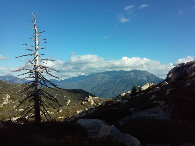 Rock Climbing Photo: Looking towards Hwy 38 from below the Fire Lookout...