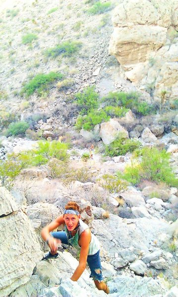 """Looking Down from Iron Giant, Yellow Jacket Boulders, at """"Washington Boulder""""."""