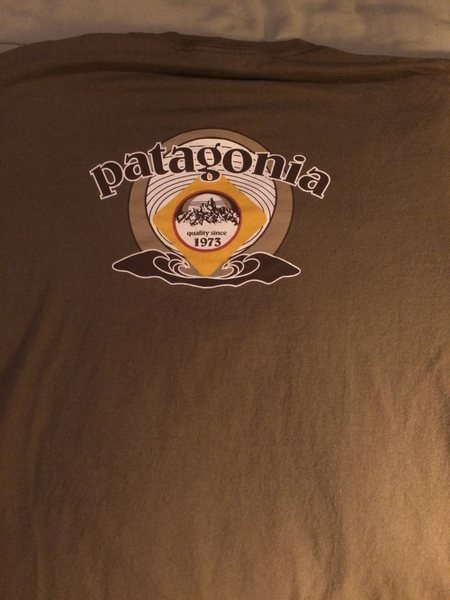 Patagonia shirt brown