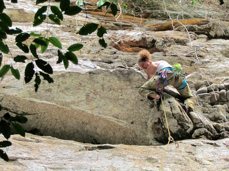 sport climbing route in the Amazon