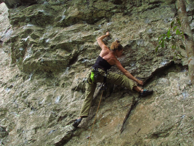 sport climbing route