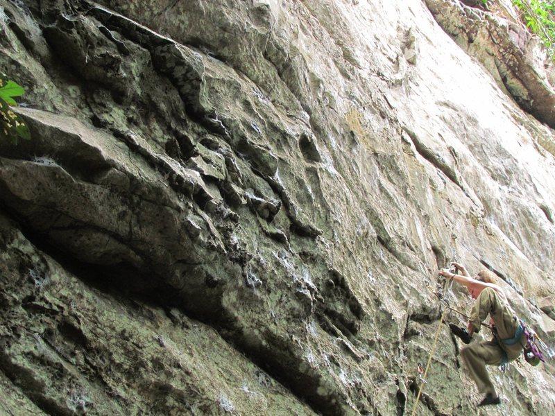 Rock Climbing Photo: sport climb