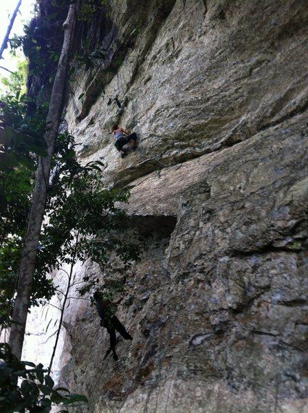 Rock Climbing Photo: sport climbing route