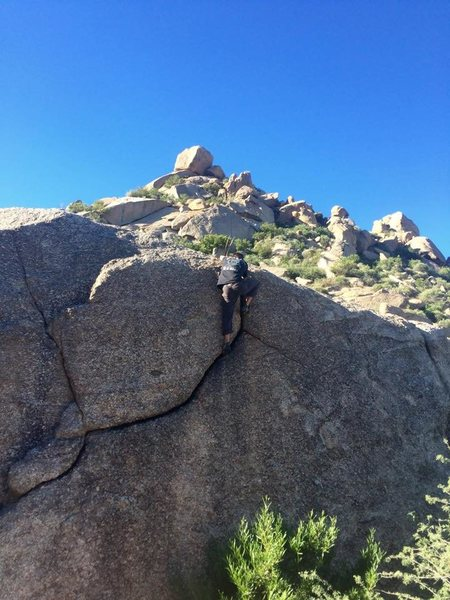 A really fun, easy boulder problem.<br> <br> Girlie Man wall can be seen in the background.