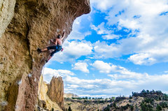 Rock Climbing Photo: Ned Rodat getting it on