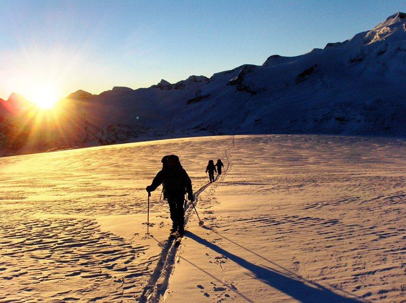 Rock Climbing Photo: Wapta Icefield