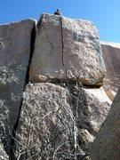 Rock Climbing Photo: Bush crack