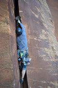 "Rock Climbing Photo: ""Well, that might hold a wet cat""...tipp..."