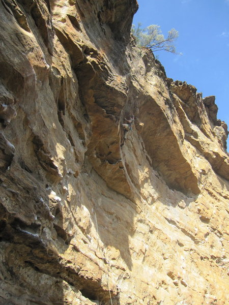 Blue Mountain Climbing, AU