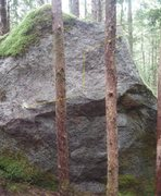 Rock Climbing Photo: Michal's Wizard Sleeve
