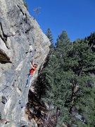 Rock Climbing Photo: Halle-Bop.