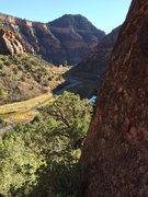 Rock Climbing Photo: Dolores Canyon.