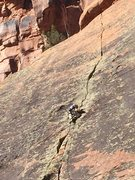 Rock Climbing Photo: Miles Newbie takes a Halloween Sunday Stroll, 10/3...