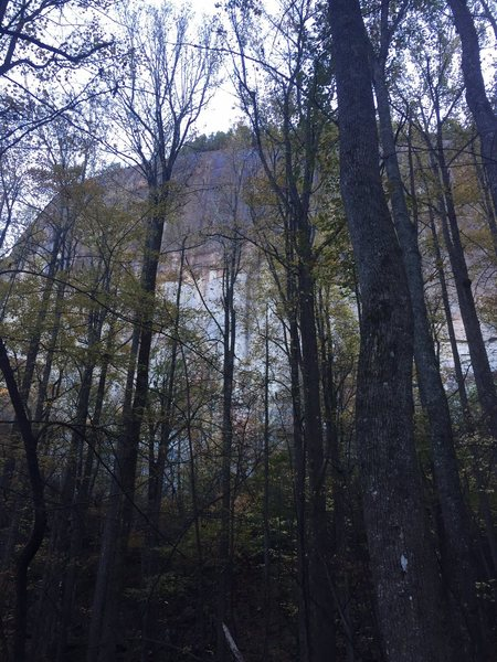 Rock Climbing Photo: From the trail. Looks intimatating for someone vis...