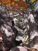 Rock Climbing Photo: The dihedral and face