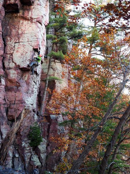Rock Climbing Photo: Agitator. 11/1/2015. Photo: Ellen Brodrick.