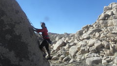 Rock Climbing Photo: Vanessa Wentwoord on Sexy Bolt.