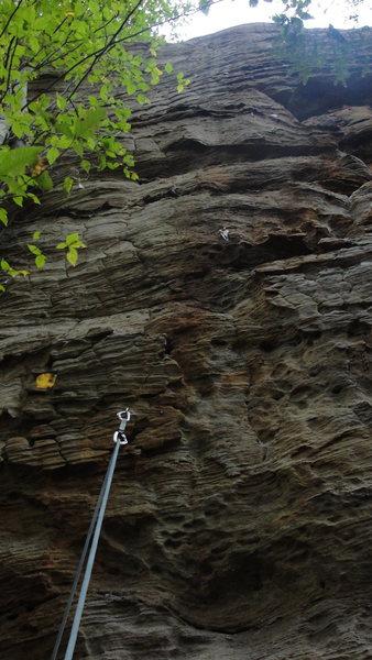 Rock Climbing Photo: So Low- 12c.