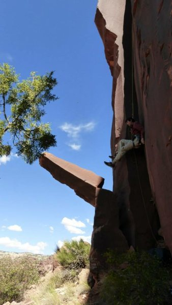 Rock Climbing Photo: Tell me why you would do this?!!  I hope you know ...