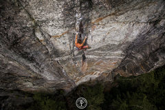 Rock Climbing Photo: Mark Richey on the crux of Wild Thing after climbi...