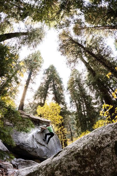 Rock Climbing Photo: Devin climbing in LCC