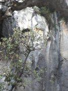 Rock Climbing Photo: la grotta