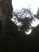 Rock Climbing Photo: skylight climbing
