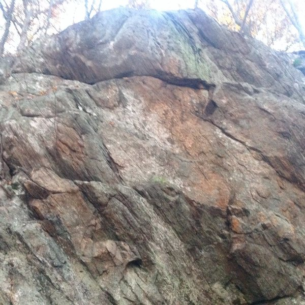 Rock Climbing Photo: Moptop
