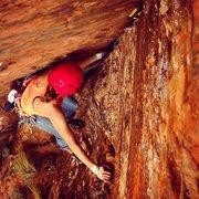 Rock Climbing Photo: Pitch 5 of R Toilet Bowl Cracks, Zion