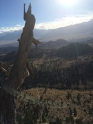 Rock Climbing Photo: View from the dead tree belay!