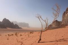 Rock Climbing Photo: Jordan