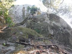 Rock Climbing Photo: Base of the crag