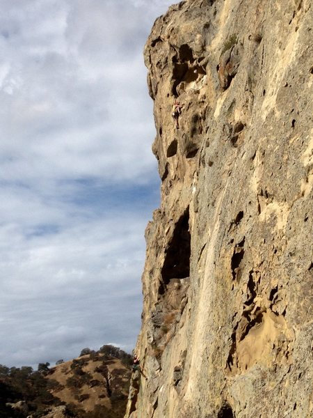 Aaron Hope on the second Pitch of Proboscis