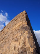 Rock Climbing Photo: To the Moon! Shark's Fin arete in the morning.