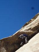 Rock Climbing Photo: Comfy.