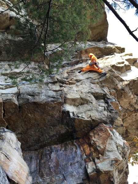 Rock Climbing Photo: wild charmander on thin slabs direct