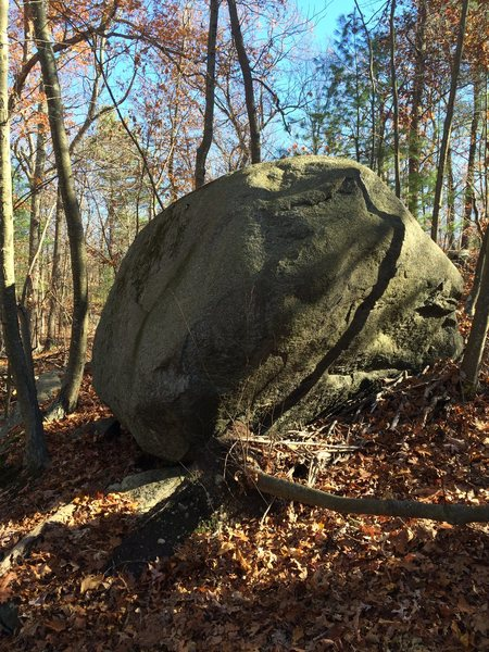 Rock Climbing Photo: Eyeball Boulder.