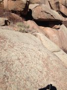 Rock Climbing Photo: Chicken Boulder descent area.