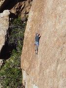 "Rock Climbing Photo: Cruising on ""Intellitoys."""