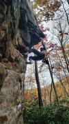 Rock Climbing Photo: Free Range Show Poodle