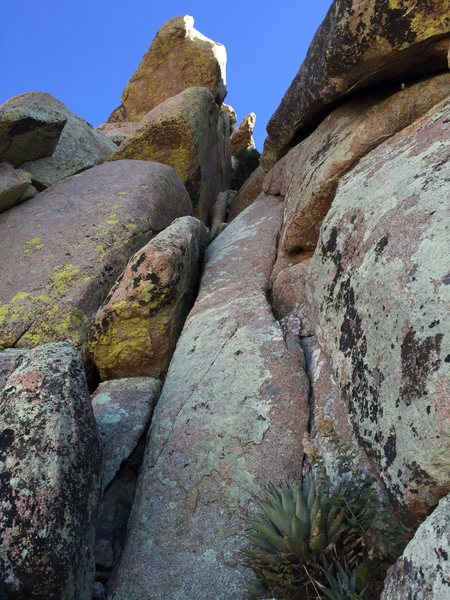 Rock Climbing Photo: Looking up pitch 3 from the belay ledge